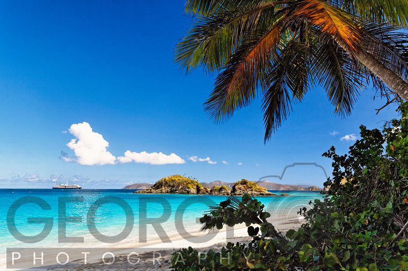 Beach View from Under a Palm Tree, Trunk Bay, St John, US Virgin Islands