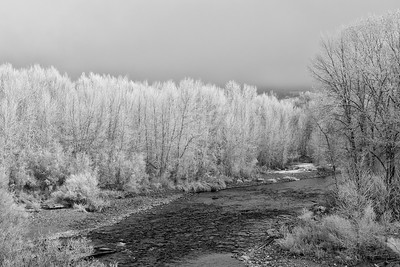 Hoarfrost on the Big Wood River, Idaho