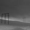 Into the Elkhorn Fog
