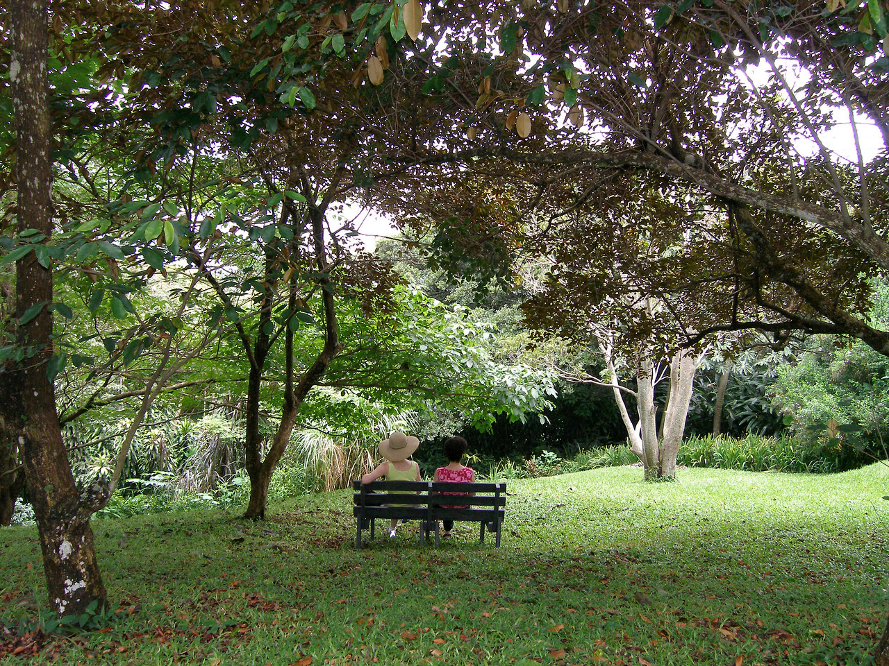 An idyllic spot for communing with nature....