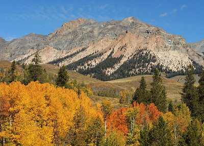 Early Fall in Idaho's Boulder Mountains