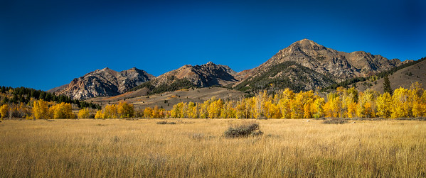 Fall, Boulder Mountains Idaho