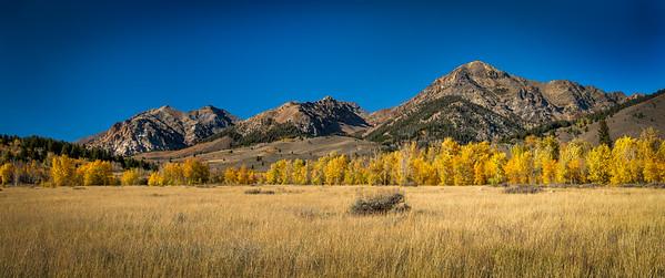 Fall, Boulder Mountains Idaho