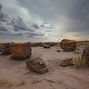 8/2/13 Petrified Forrest outside Flagstaff, AZ.