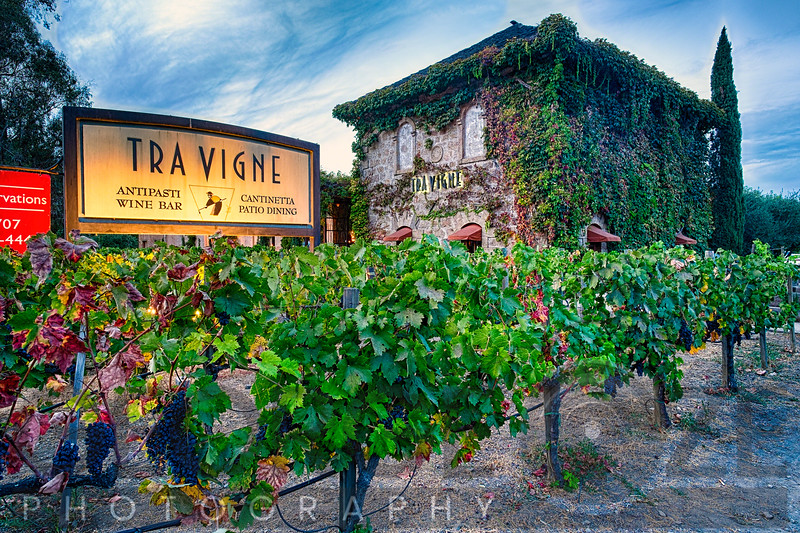 Tuscan Style Building in a Vineyard