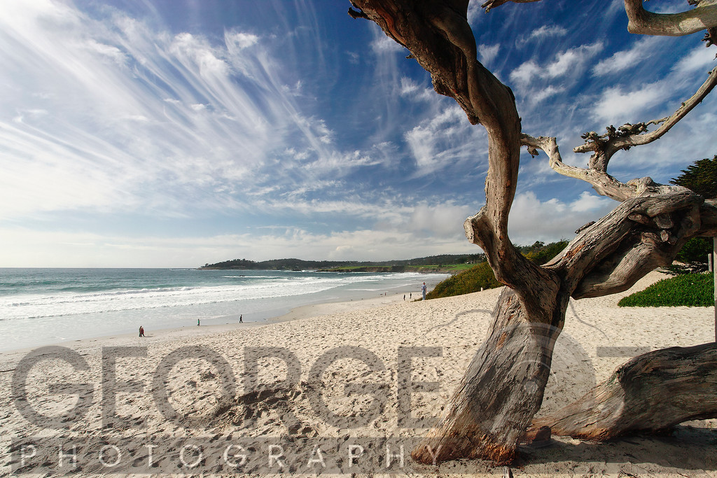 Wide Angle Beach View, Carmel by the Sea, California