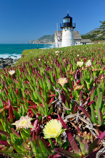 Point Montara Lighthouse with Spring Flowers, California