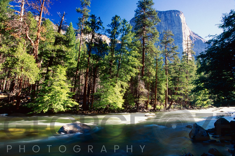 Low Angle View of the Merced River with the El Capitan, Yosemite  National Park, California
