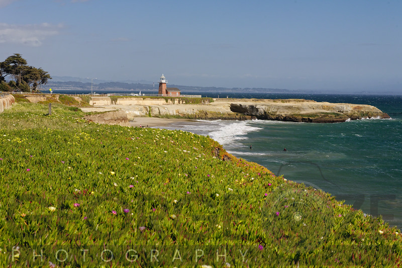 View of Dog Beach and the Santa Cruz Lighthouse, California