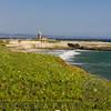 View of Dog Beach and the Santa Cruz Lighthouse, California