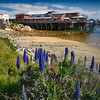 View of the Fishermen's Wharf During Spring, Monterey, California