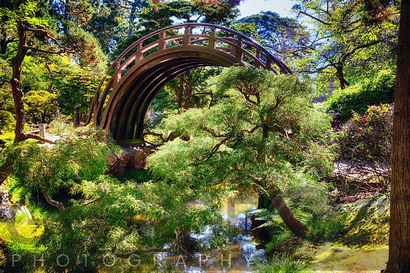 Moon Bridge Over a Small Creek in a Japanese Garden