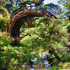 Moon Bridge Over a Small Creek in a Japanese Garden