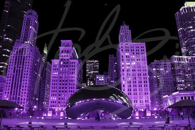 The Purple Bean