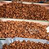 Beans 304-1