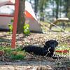 Camping_20170929_1013