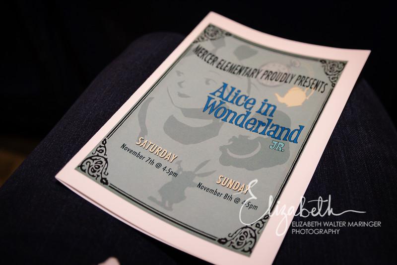 Alice in Wonderland_20151107-25