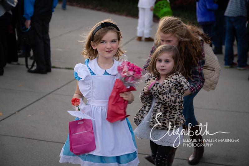 Alice in Wonderland_20151107-177