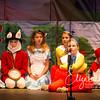 Alice in Wonderland_20151107-129