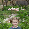 zoo_first_20160512_1003