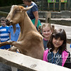 zoo_first_20160512_1011