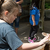 zoo_first_20160512_1009