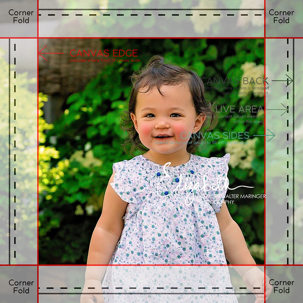 1 5in_12x12_GalleryWrap_6056_new
