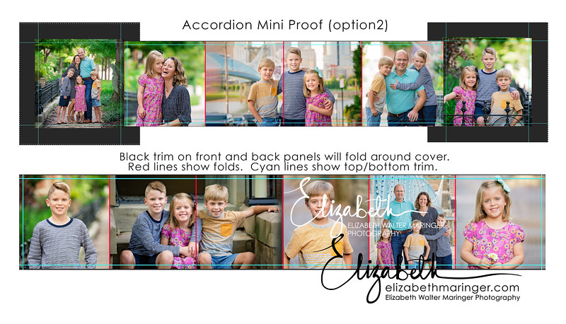 Accordion Mini Proof 2