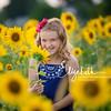 Sunflowers_20200822_2012