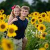 Sunflowers_20200822_2006