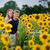 Sunflowers_20200822_2005