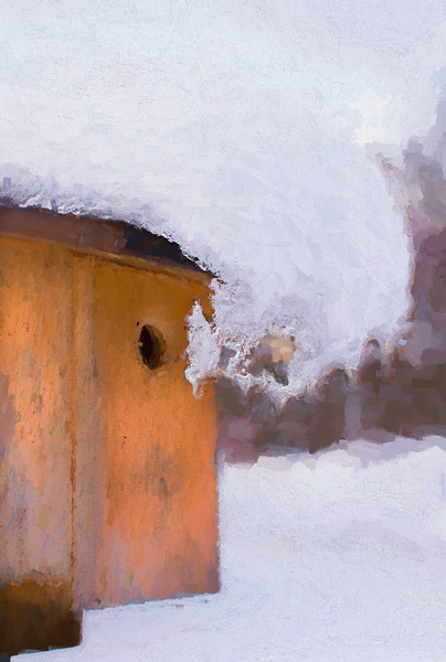Snowdrift On The Bluebird House
