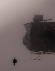 Bird and Boat in Fog