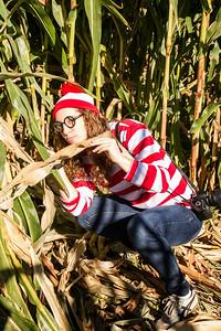 Corn_Maze-15.jpg
