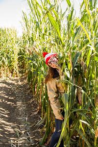 Corn_Maze-07.jpg
