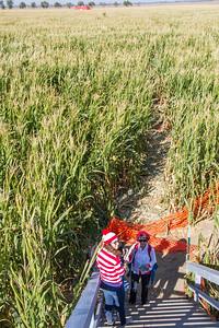 Corn_Maze-20.jpg