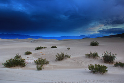 Twilight on Mesquite Sand Dunes
