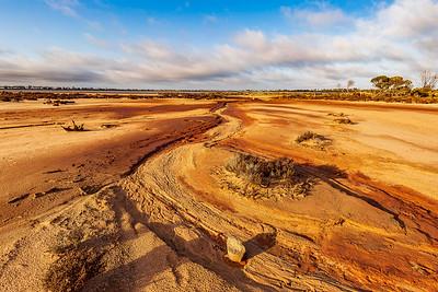 Desert Morning 1361