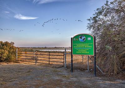 Woodbridge Ecological Reserve