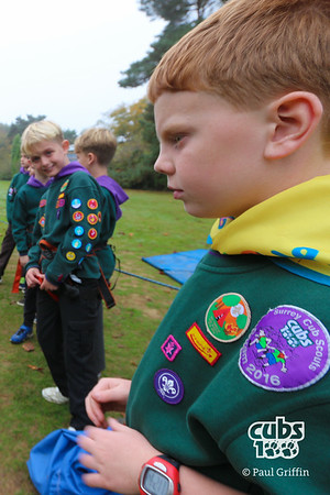 Esher District Cubs100 Totem Pole