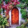 Little Door Surronded by Ivy