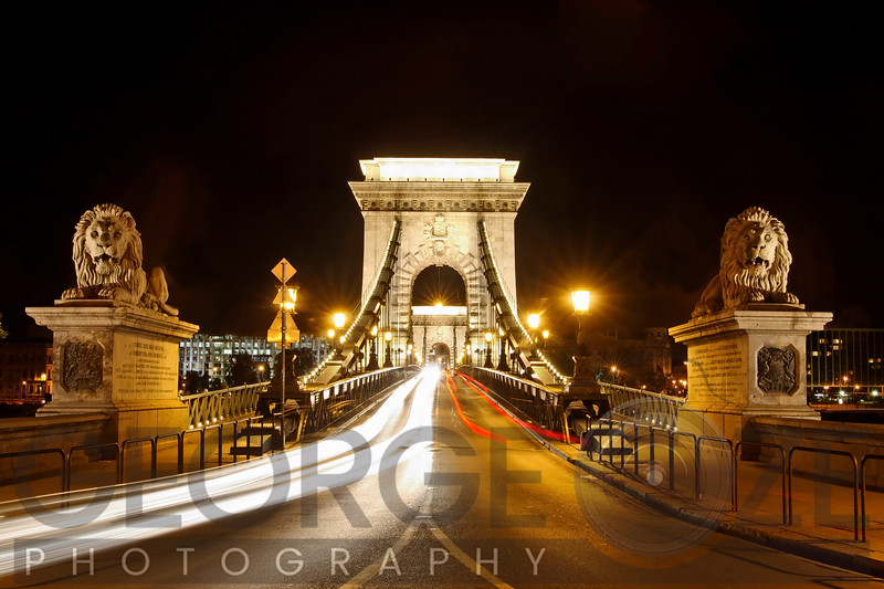 Lion Sculptures of the Chain Bridge at Night, Budapest, Hungary