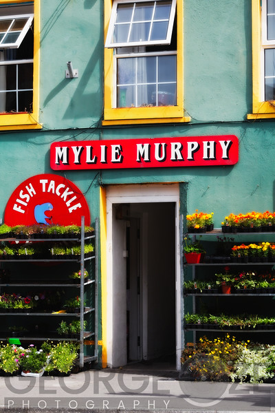 Store Entrance, Kinsale, County Cork, Republic of Ireland