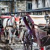 Horse-Drawn Carriages Waiting for Passengers, Stefansplatz, Vienna, Austria