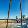 Walkway on Barcelonita Beach with Palm Trees, Barcelona, Catalonia, Spain