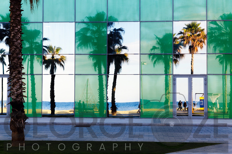 Beach with Palm Trees Reflected in the Glass Wall of a Building, Barcalona, Catalonia, Spain