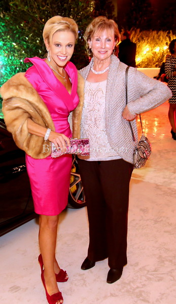 2013 Fashion Stars for A Cause