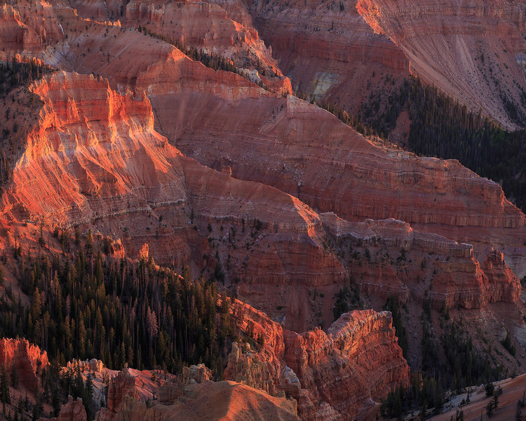 Cedar Breaks_cs-4582.jpg