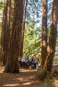 Filoli-adaptations_hike-11Mar13-22.jpg