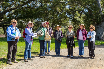 Filoli-adaptations_hike-11Mar13-02.jpg
